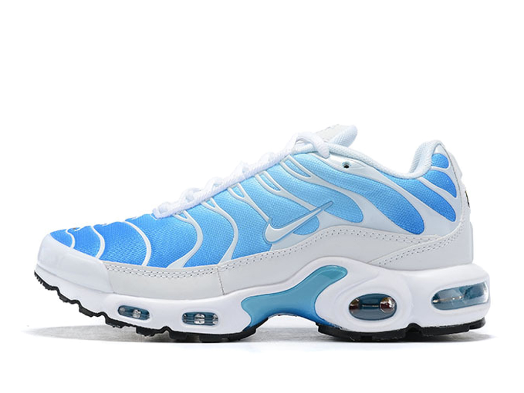 Nike Air Max Plus/Tn Requin 2019 Pas Cher Chaussures Basketball Pour Homme Bleu Blanc