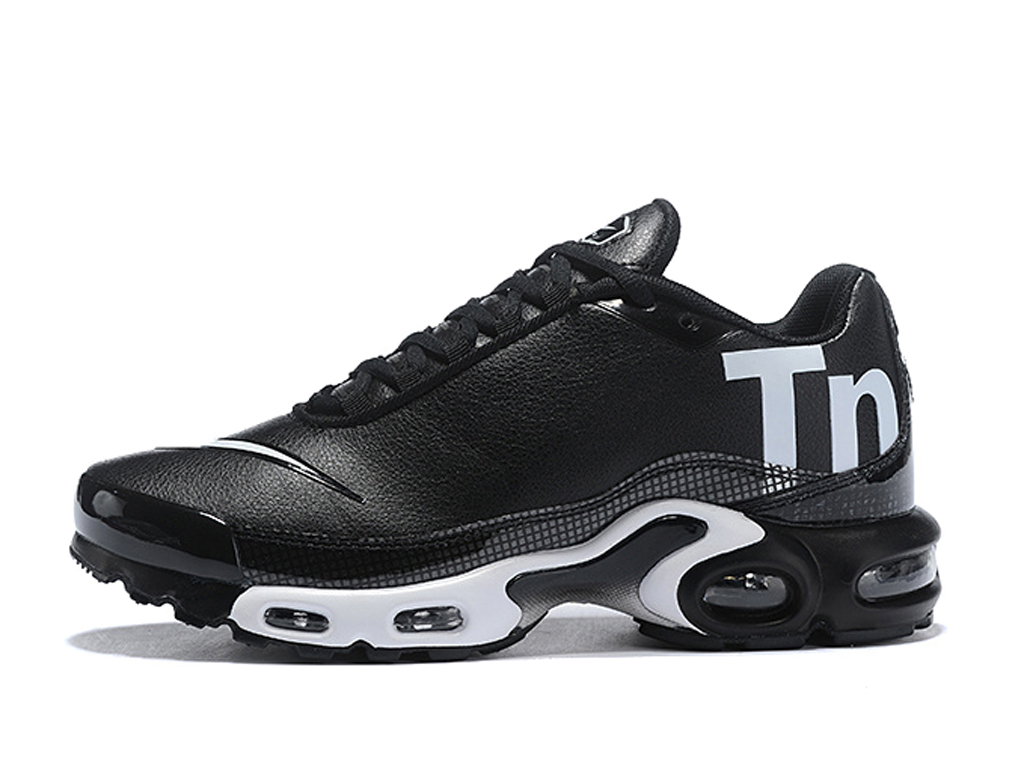 nike air max tn noir